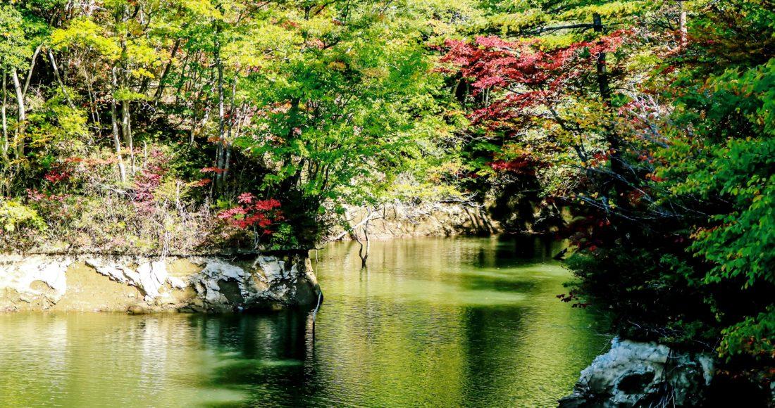 谷山自然公園-2